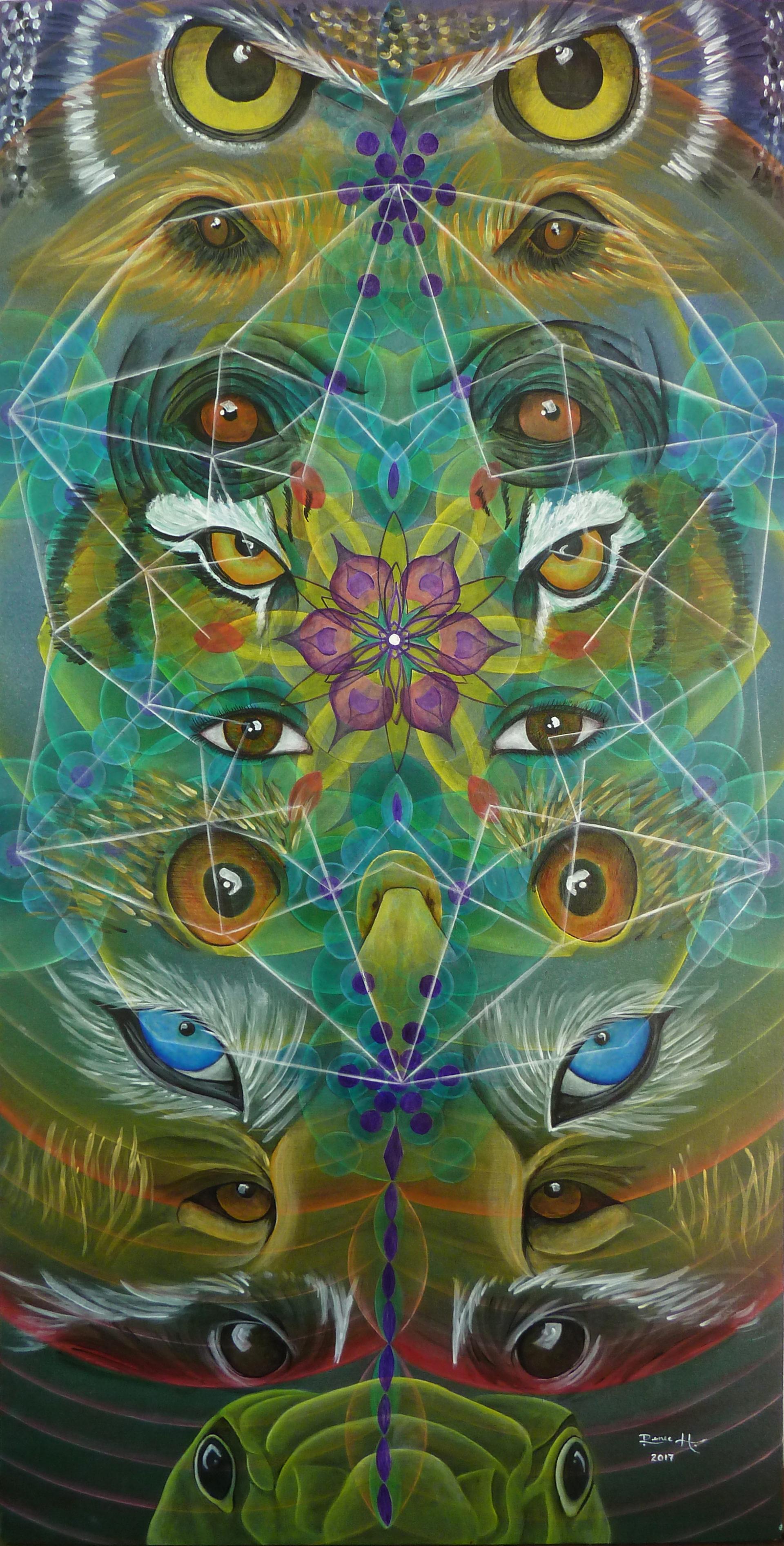 Animal Eyez